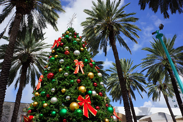 1 732 Florida Christmas Stock Photos Pictures Royalty Free Images Istock