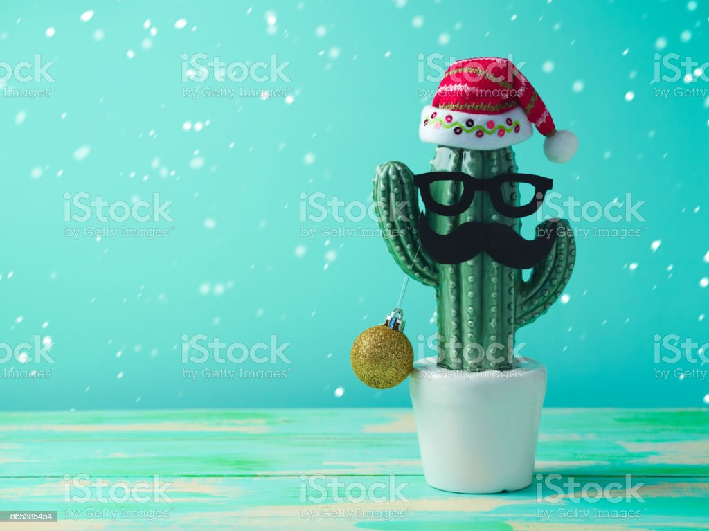 Christmas in tropical climate concept stock photo