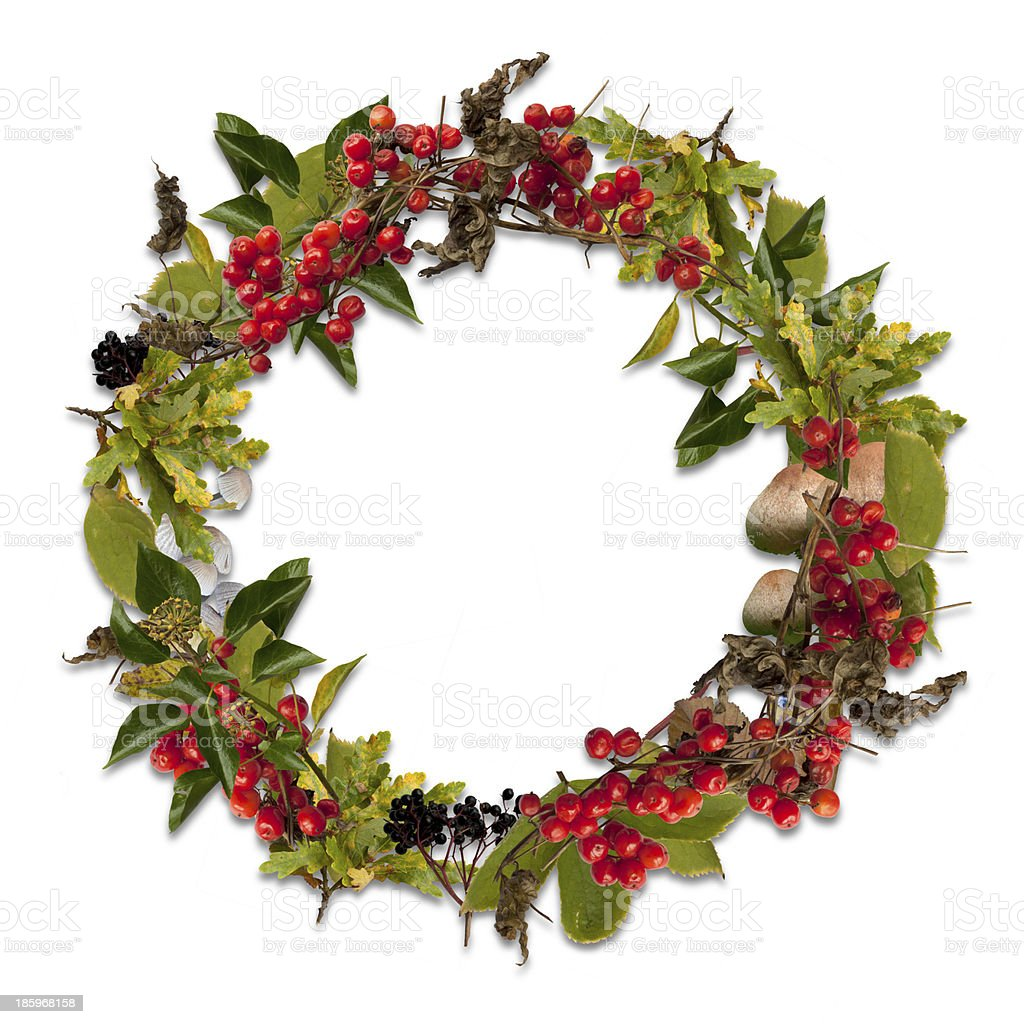 Christmas ivy wreath with white background stock photo