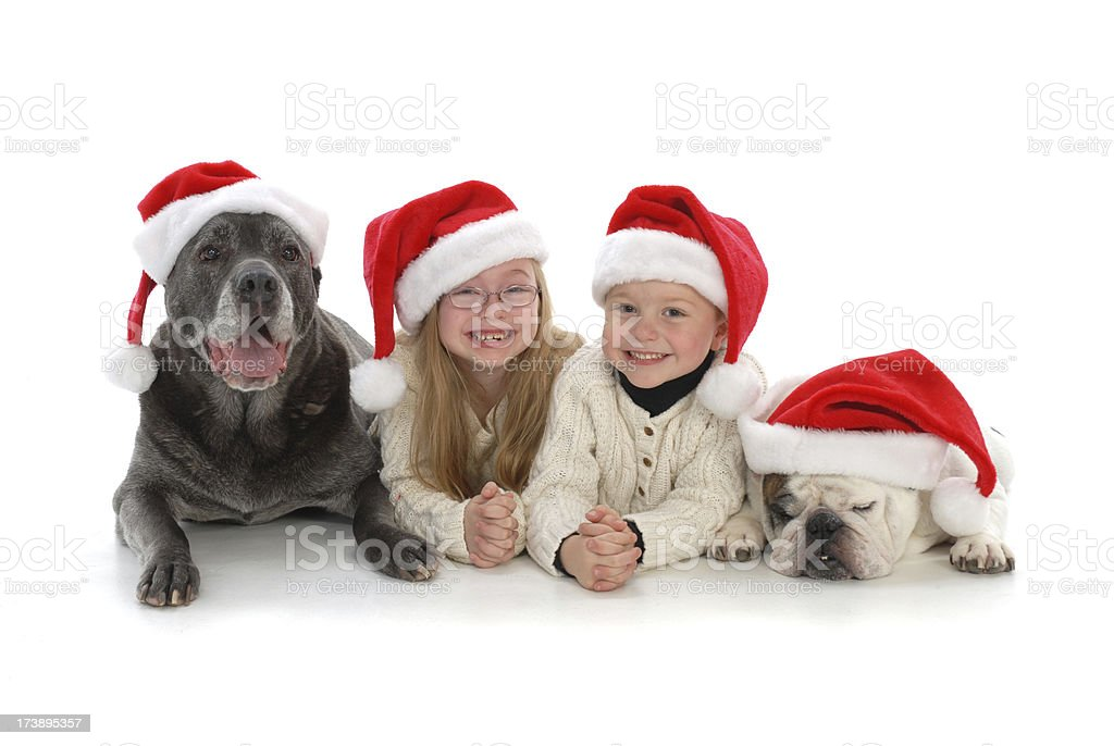 Christmas Kids and Canines royalty-free stock photo