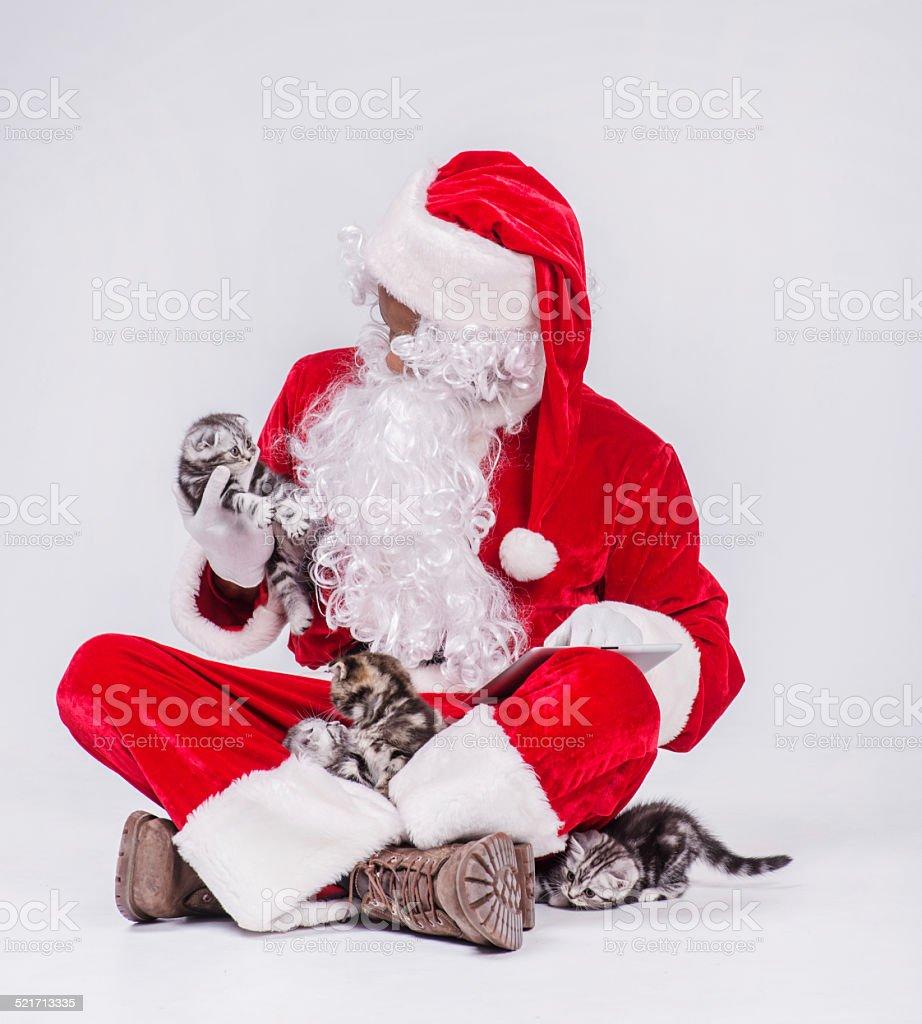 Regali Di Babbo Natale.Gattini Di Natale Regali Di Babbo Natale Sul Tablet Fotografie Stock E Altre Immagini Di Adulto Istock