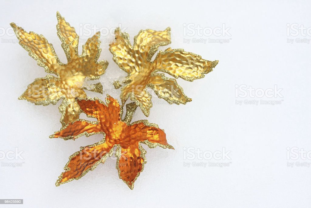 Christmas leaves in the snow royalty-free stock photo