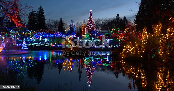 Beautiful Christmas light display in Canada