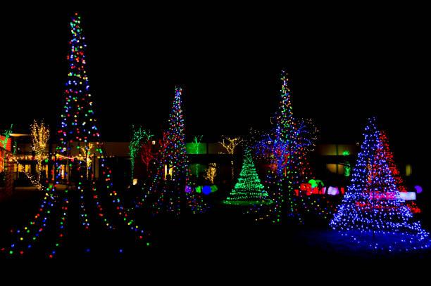 christmas light garden - christmas lights imagens e fotografias de stock