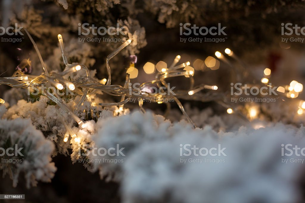 christmas light stock photo