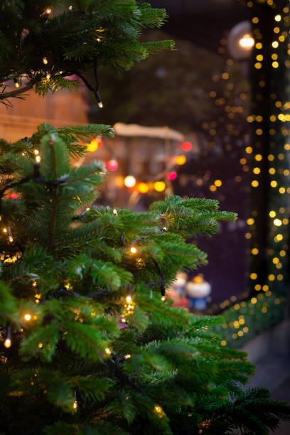weihnachtsbeleuchtung und bäume schmücken ein schaufenster - weihnachtsfeier münchen stock-fotos und bilder