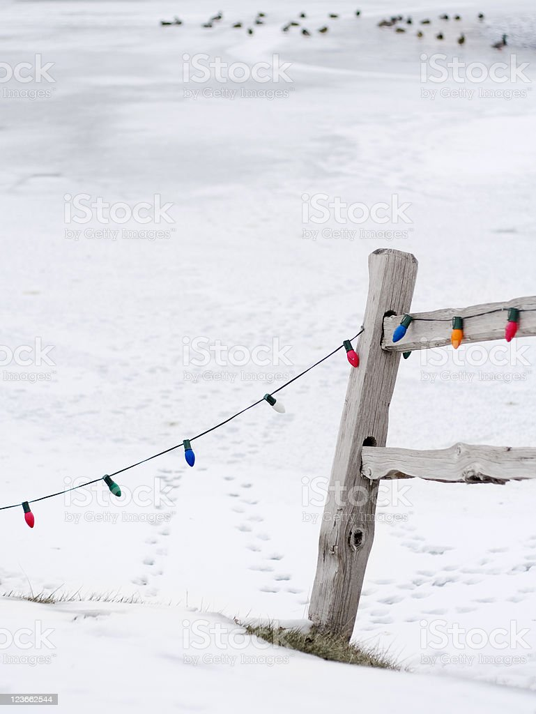 Christmas lights strung from fence royalty-free stock photo