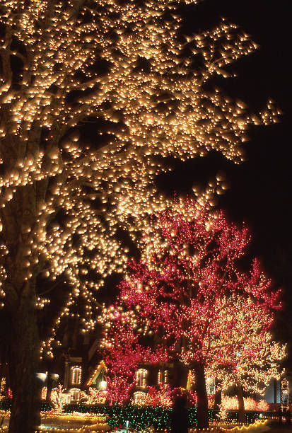 Temple Square Salt Lake City Christmas Lights.Christmas Lights Tabernacle Downtown Temple Square Salt Lake