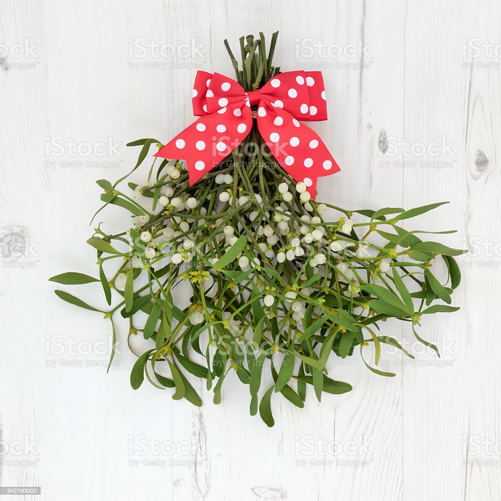 Christmas Mistletoe Decoration stock photo