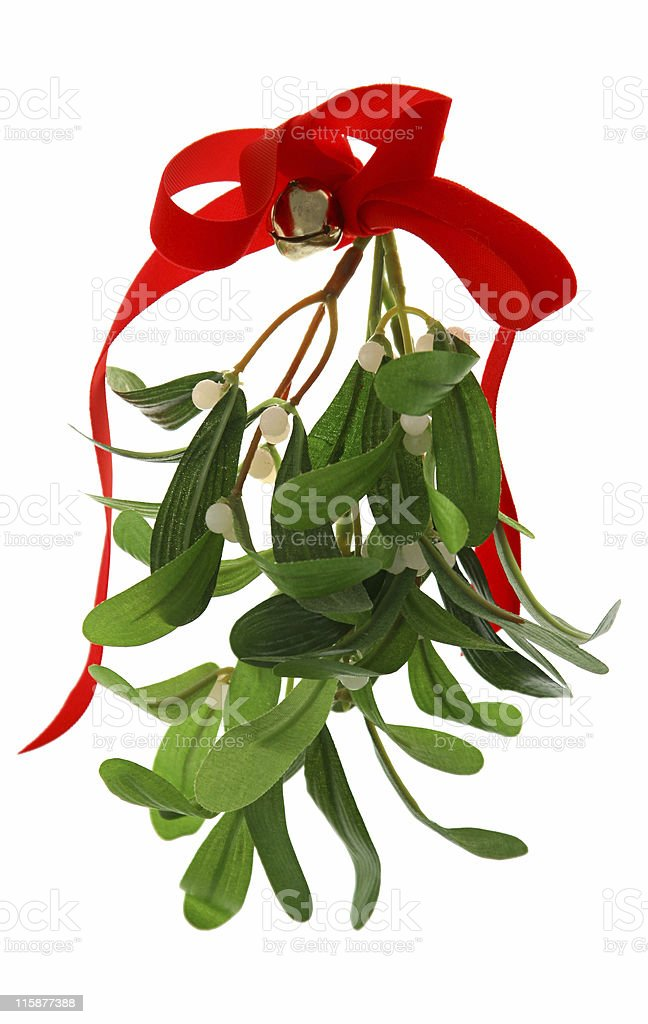Christmas Mistletoe Isolated stock photo