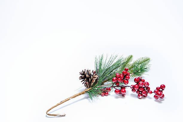 Christmas Mistletoe On White Background. stock photo