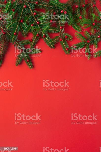 Christmas new year composition firtree branches with red berries on picture id1190442164?b=1&k=6&m=1190442164&s=612x612&h=6emlf t1gy7cmla2 s0ricxeasvcm51uxaciqom6ggo=