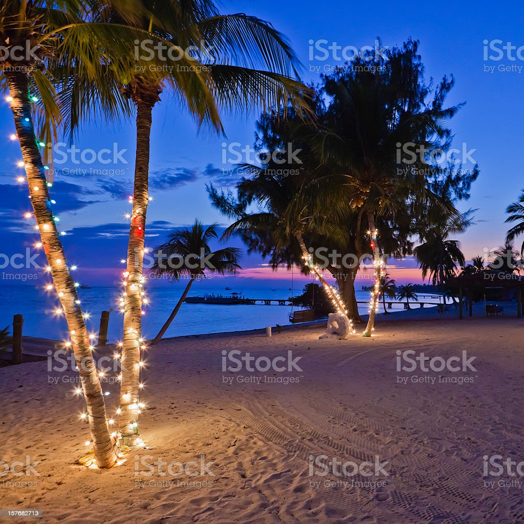 Christmas on the Beach, Cayman Islands Palm trees on the beach decorated with Christmas lights. Little Cayman, Cayman Islands.  Beach Stock Photo
