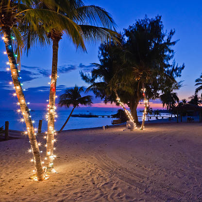 Christmas On The Beach Cayman Islands Stock Photo - Download Image Now