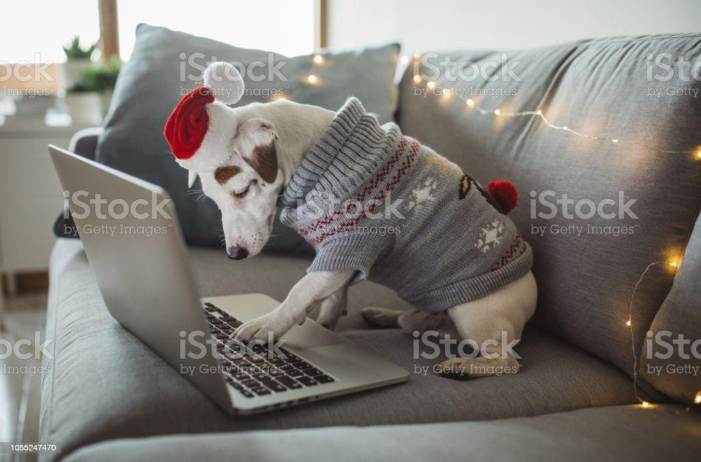 Christmas online shopping stock photo
