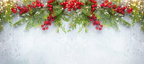 Weihnachten oder Winter Hintergrund mit einer Grenze von immergrünen Zweigen und roten Beeren – Foto
