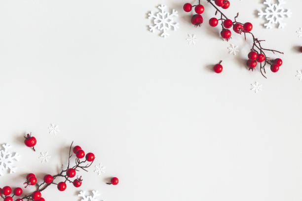 Christmas or winter composition. Snowflakes and red berries on gray background. Christmas, winter, new year concept. Flat lay, top view, copy space stock photo