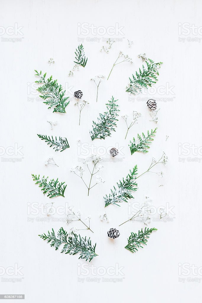 Christmas pattern of pine cones, thuja branches and gypsophila flowers stock photo