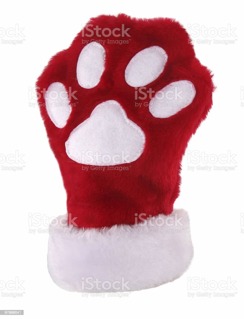 Christmas paw stocking royalty-free stock photo