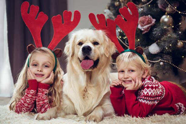 christmas-englische redewendung - weihnachten 7 jährige stock-fotos und bilder