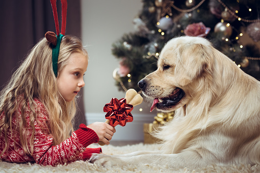 Happy girl and dog waiting for Christmas