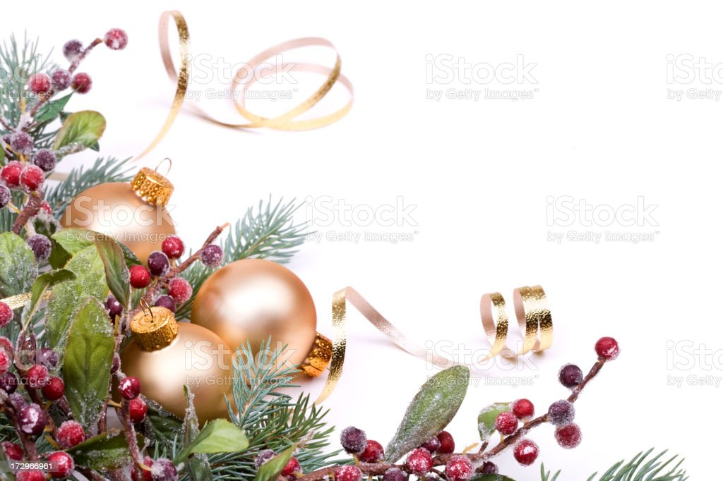 Christmas Pine and Berries, Gold baubles and ribbon on white. royalty-free stock photo