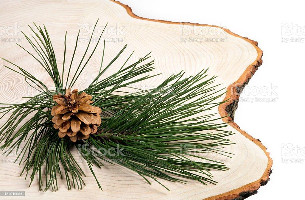 Christmas Pine Background royalty-free stock photo