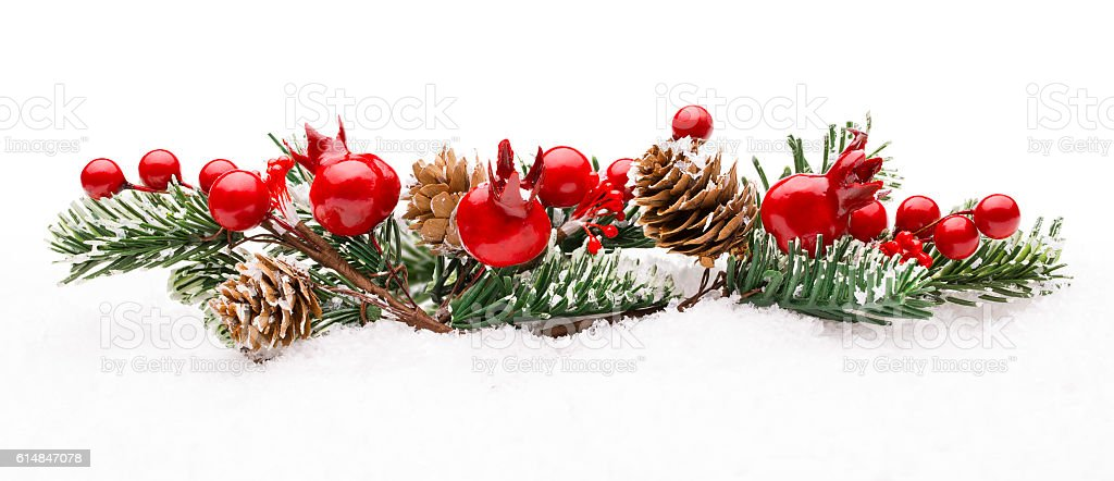 Christmas Red Berries Decoration, Berry Branch Pine Tree Cone Isolated stock photo