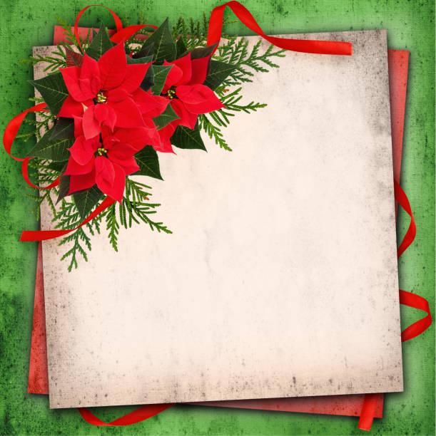 weihnachtsarrangement roten weihnachtsstern blumen und roten band bogen - weihnachtssterne aus papier stock-fotos und bilder