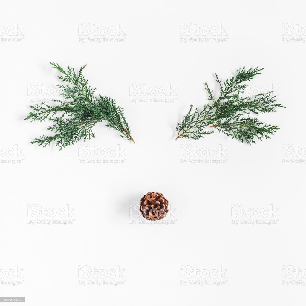 Christmas reindeer made of pine branches. Flat lay, top view stock photo