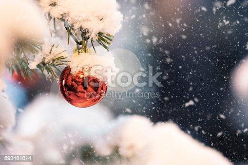 858960516 istock photo Christmas Scene 893481014