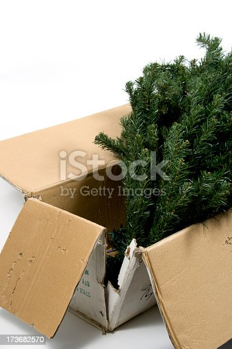 istock Christmas set up 173682570