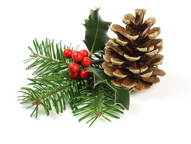 weihnachten-ambiente - stechpalme stock-fotos und bilder