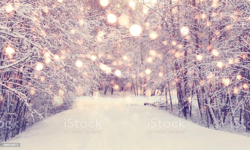 Neige de Noël dans le parc - Photo de Noël libre de droits