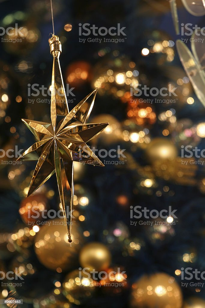 Christmas Star royalty-free stock photo