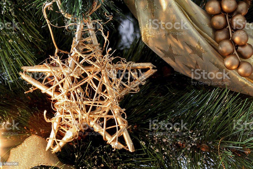 Christmas Star royalty-free stock photo