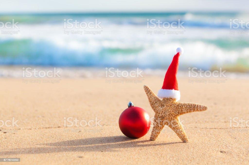 Weihnachten-Seestern Urlaub am tropischen Strand von Hawaii – Foto