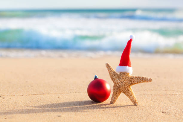 Hawaii Christmas.Best Hawaiian Christmas Stock Photos Pictures Royalty