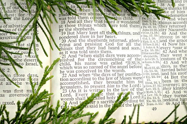 christmas story, mit grün - adventgeschichte stock-fotos und bilder