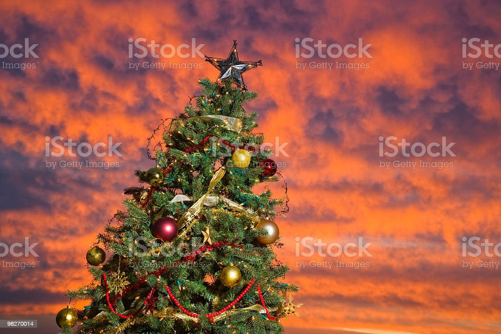 Christmas Three royalty-free stock photo