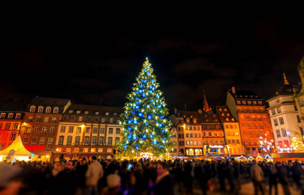 Christmas time in Strasbourg City, Alsace, France Big Christmas tree in Capital of Christmas, Strasbourg City, Alsace, France. Noel 2016 strasbourg stock pictures, royalty-free photos & images