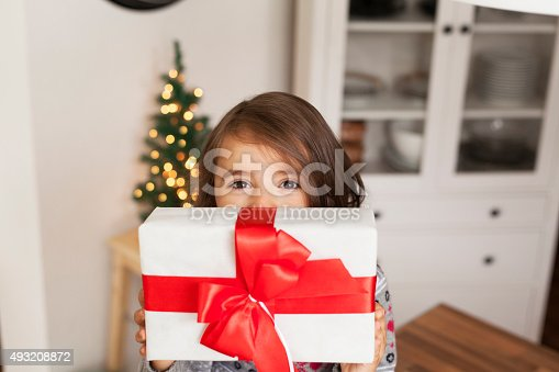 1061876006 istock photo Christmas time 493208872