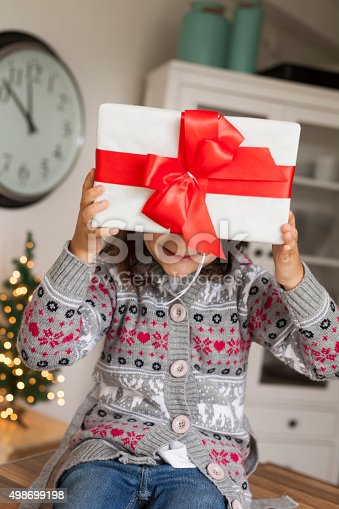 1061876006 istock photo Christmas time 498699198