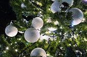 Christmas tree light up ceremony at Christmas time, Prague, Czech Republic.