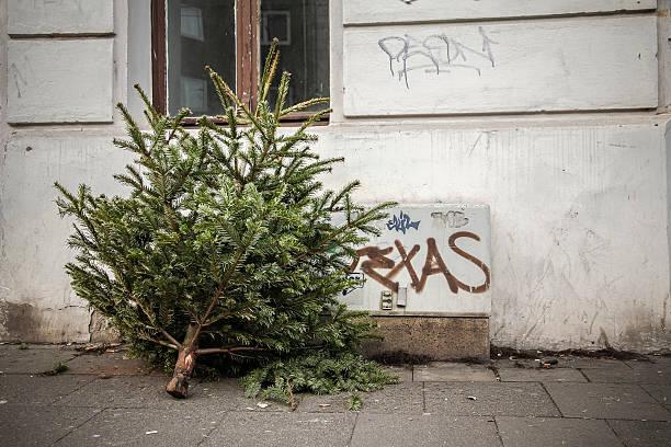 christmas tree lighting ceremony nach dem fest vor dem haus - alte weihnachtsbäume stock-fotos und bilder