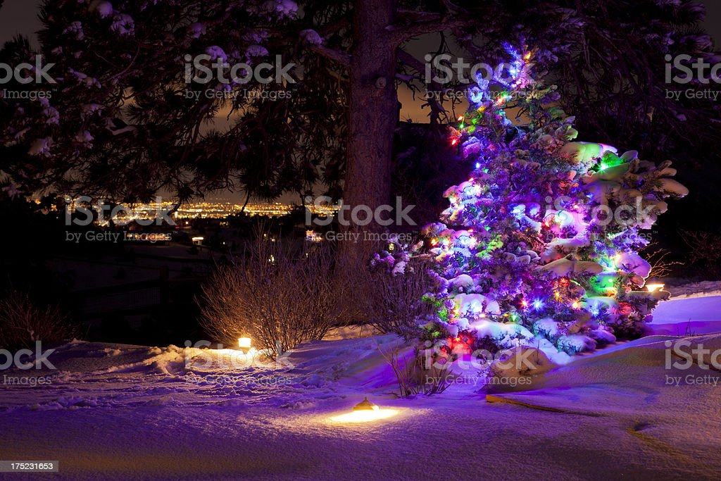 Christmas Tree & City Lights royalty-free stock photo
