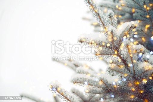 Christmas tree and Christmas decoration