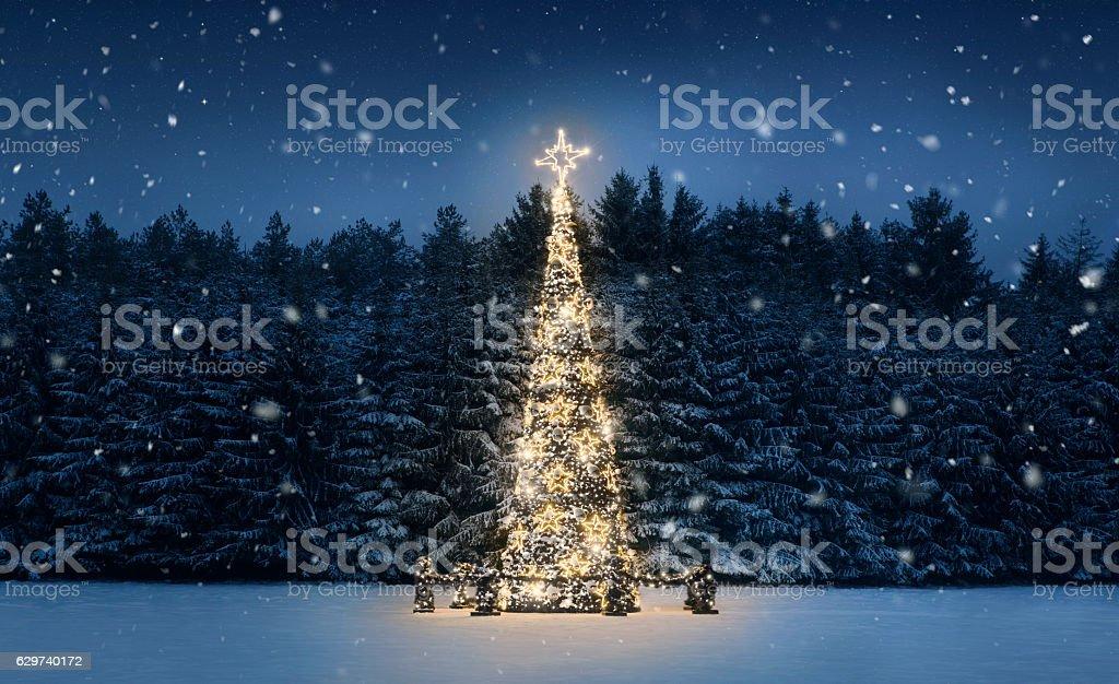 夜のクリスマスツリー - イルミネーションのロイヤリティフリーストックフォト