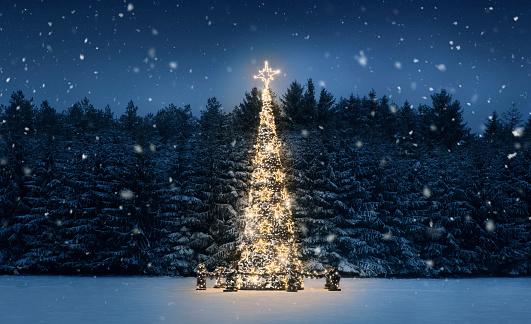 夜のクリスマスツリー - イルミネーションのストックフォトや画像を多数ご用意