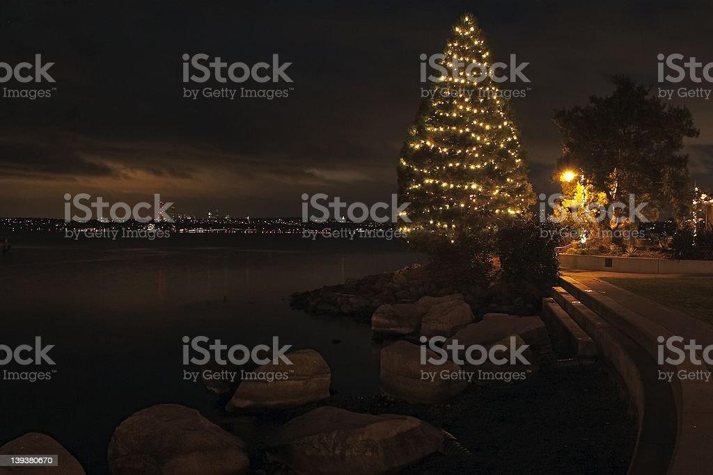 christmas tree at the waterfront at dusk royalty-free stock photo